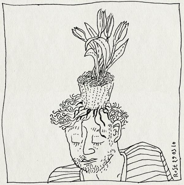 tekening 1047, bloempot, bloempotkapsel, crocus, flower pot, hoofd, krokus