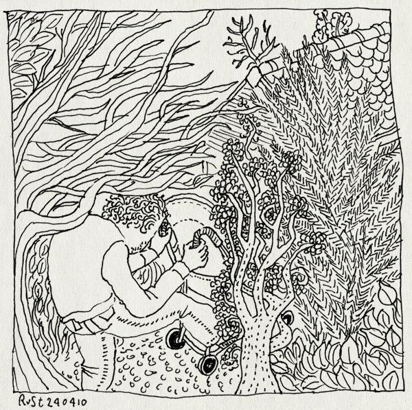 tekening 1073, alwine, bos, buggy, overwoekerd, pad, tuinhuisje, vat, volkstuintje