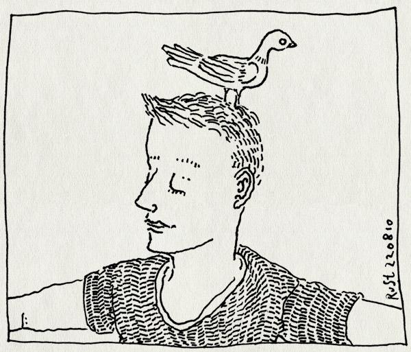 tekening 1193, bob, duif, hoofd, marcel, pigeon, stagparty, vrijgezellenfeest