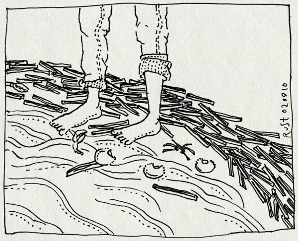 tekening 1204, bakkum, beach, branding, krabbetjes, opgerolde broekspijpen, pootjebaden, scheermesjes, schelpen, strand, voeten