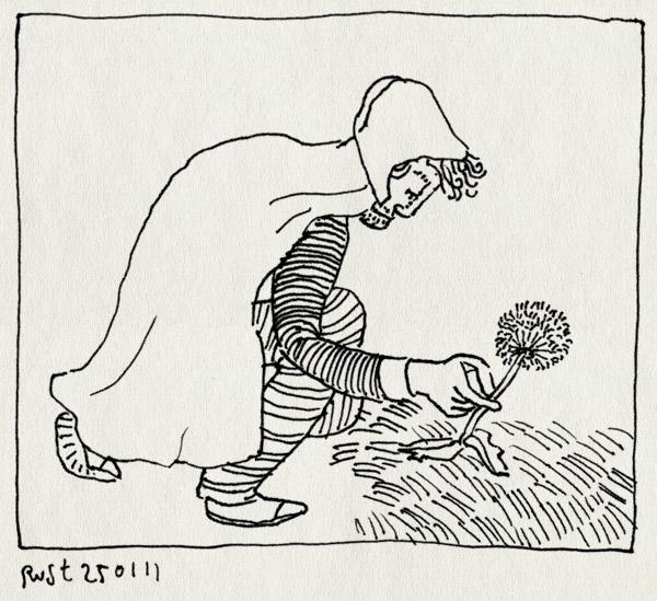tekening 1348, cape, capuchon, paardenbloem, pluizenbol, pluk, plukken