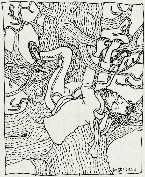 tekening 1394, amsterdamse bos, boom, boomklimmen, gaaf, klimmen