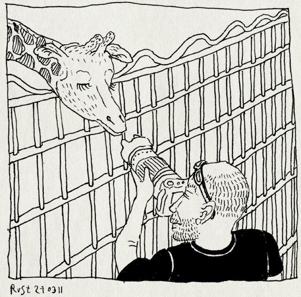 tekening 1409, artis, emil, fotograaf, fotograferen, giraffe, hek