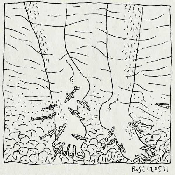 tekening 1454, bubbletjes, dordogne, lekker, rivier, visjes, voeten