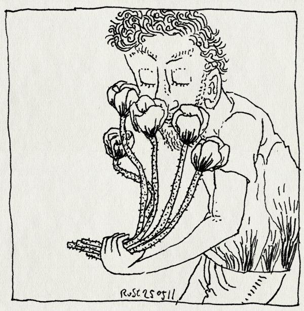 tekening 1467, attent, bloemen, burorust, cadeautje, klaprozen, wolterinck event decoration