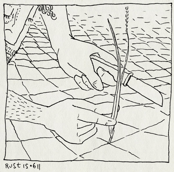 tekening 1488, details, gras, grasspriet, mes, snijden, stoep, tegels