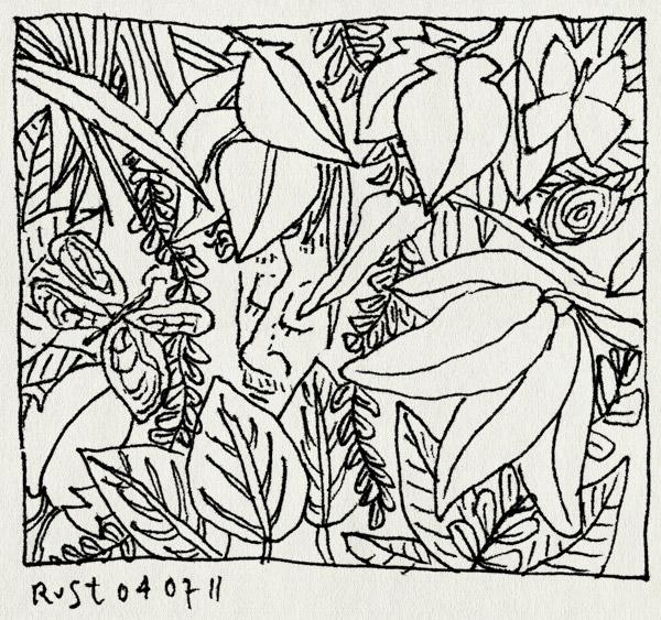 tekening 1507, artis, jungle, paviljoen, planten