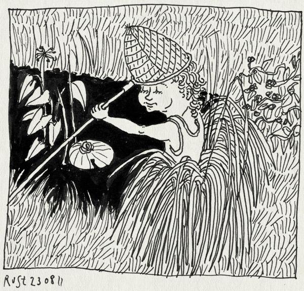 tekening 1557, alwine, kikker, schepnet, stado, texel, vangen, vijver