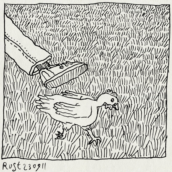 tekening 1583, gras, kip, pluk, struikelen