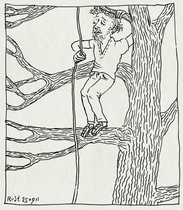 tekening 1585, boom, hoog, klimmen, liaan, touw