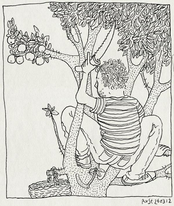 tekening 1767, handig, la cenicera, mandje, oogsten, sinaasappelboom, snoeien, zaag