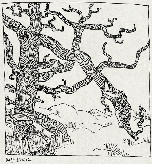 tekening 1856, boom, dood, doorbuigen, heide, otterlo, veluwe