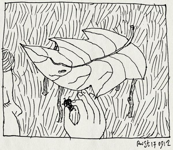 tekening 1942, alwine, beatrixpark, blad, huisje, insectofiel, lief, lieveheersbeestje