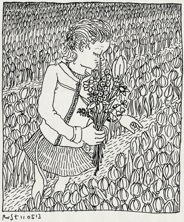 tekening 2178, alwine, bloemen, bloemenveld, boeket, plukken, tulpen, veld, veldboeket, westeremden