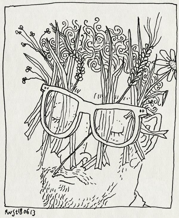 tekening 2216, bloei, bril, gras, hooikoorts, pollen, veldboeket
