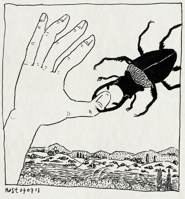 tekening 2235, beetjes, bijten, casa san carlo, insect, italie, uitzicht, umbrie, vakantie2013, vangst, vliegend hert