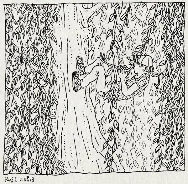 tekening 2270, beatrixpark, boom, lievelingsboom, midas, slingeren