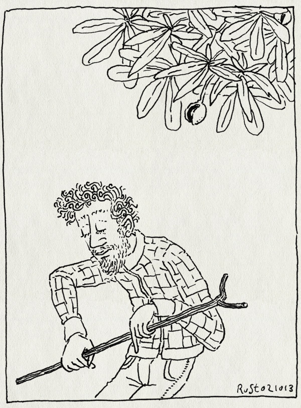 tekening 2322, eruit, herfst, kastanje, kastanjeboom, stok, vlierbessenplukmachine