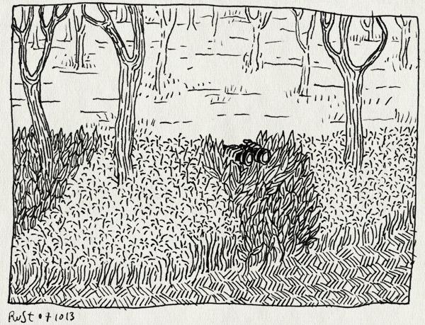 tekening 2327, midas, park, speeltuin, spelen, spoinnetje, verrekijker, verstoppen