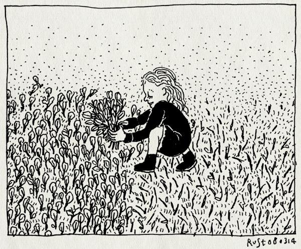 tekening 2479, alwine, amstelpark, bloemenveld, krokussen, krokusveld, lente, plukken