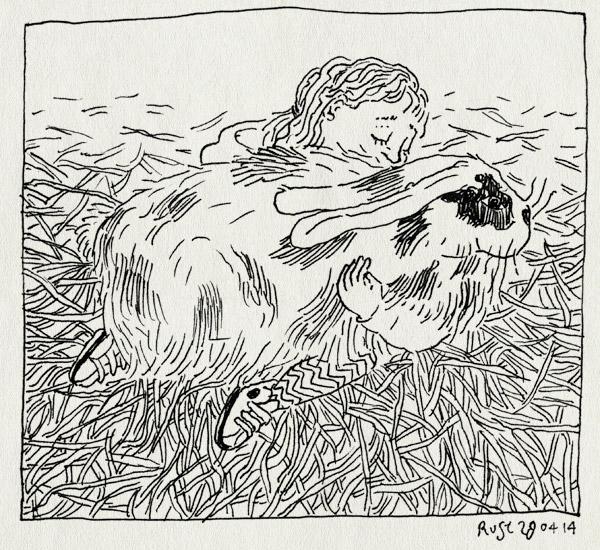 tekening 2530, alwine, amsteldieren, amstelpark, knuffelen, konijn, stro, vlaamse reus
