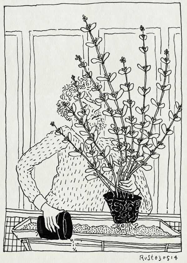 tekening 2535, aarde, balkon, buren, groot, nieuw, planten, potgrond, verpotten