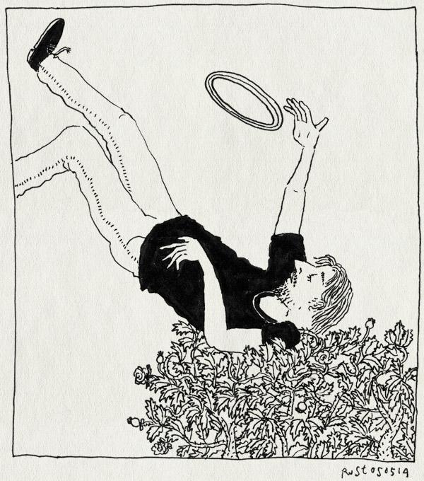 tekening 2537, frisbee, hilversum, jurgen, rozenstruik, struiken, vallen