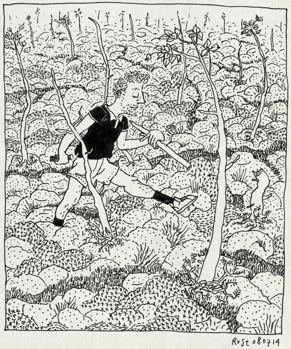 tekening 2601, blomma, moeras, mos, tak, vakantie, vakantie2014, värmland, weggezakt, zoektocht, zweden