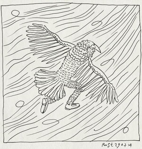tekening 2622, parkeharris, spinoff, storm, vliegen, vogel, vogelpak, wind