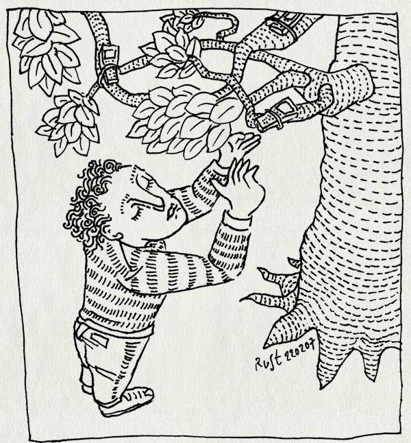 tekening 569, micompany leafs branches takken bladeren boom tree plukken mobiel blackberry reach