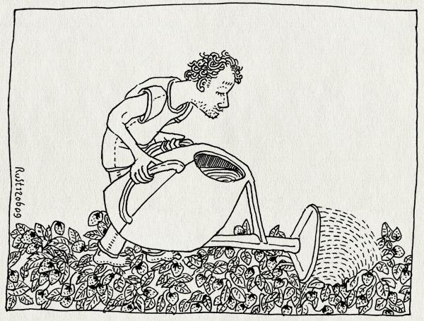 tekening 757, aardbeien, gieter, sloten, strawberries, tuin, tuinenpark, water