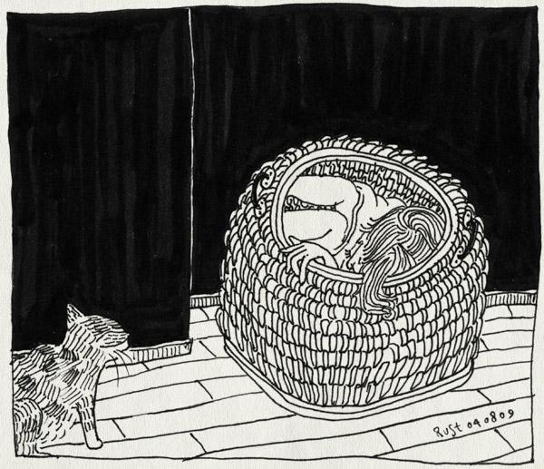 tekening 810, 10e, cocooning, kat, kattenmand, maasstraat, mand, martine, moe, nesting, poes, slaap, tijger, tijgertje, zzz