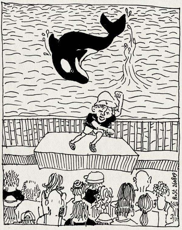 tekening 832, audience, dansen, jump springen, le rouret, marineland, midas, orca, orka, publiek, show, steelt de show, vakantie2009