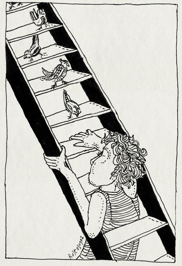 tekening 86, ladder, trap, vogel, vogels
