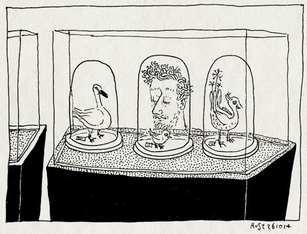 tekening 2711, artis, hoof, naturalis, op sterk water, stolpen, vogel, volgels