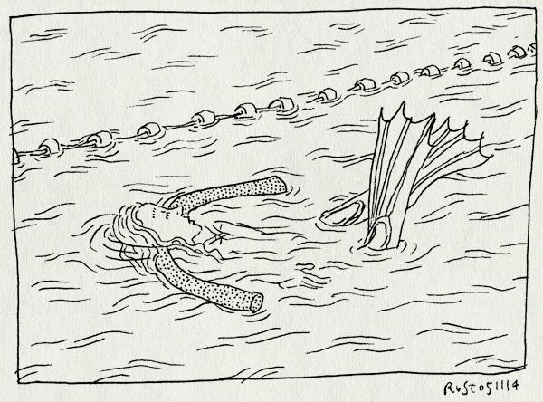 tekening 2721, alwine, drijver, flippers, kikkervoetjes, mirandabad, rugslag, water, worst, zwemles, zwemmen, zwemvliezen