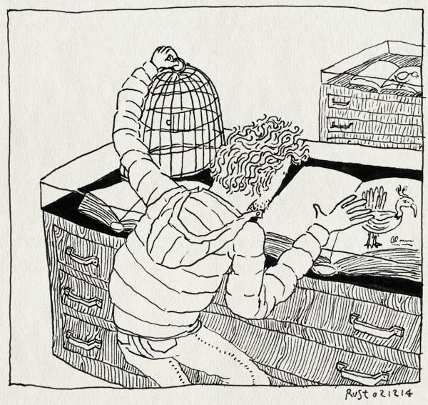 tekening 2748, bezoek, boek, den haag, kooi, meermanno, museum, museum meermanno, vangen, vitrine, vogelboeken, vogels