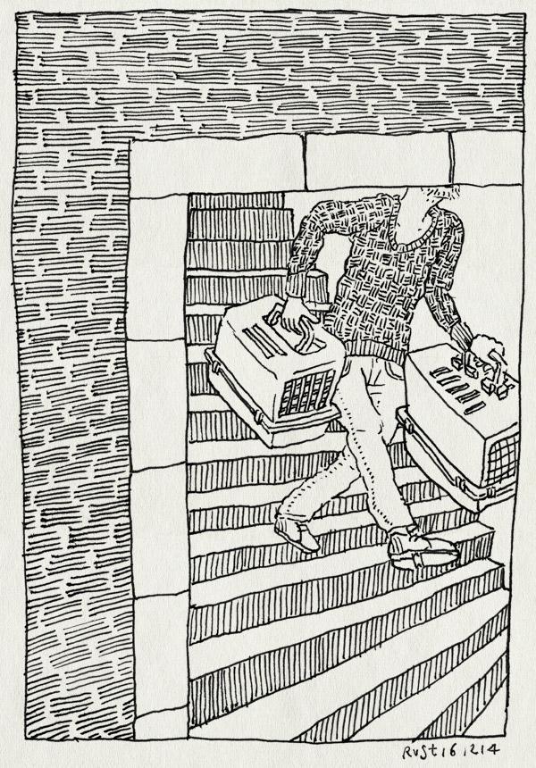 tekening 2762, katten, roosmarijn, trap, verhuizen