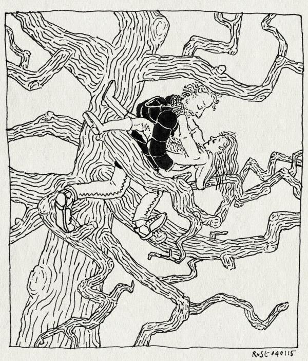 tekening 2781, alwine, boom, boomklimmen, klimboom, klimmen, redding, te hoog, vondelpark