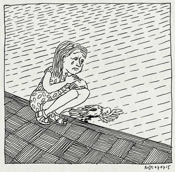tekening 2965, aangereden, alwine, dood, duif, huilen, maasplein, maasstraat, stoep, straat, verdriet, vogel