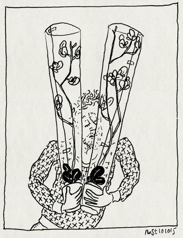 tekening 3060, bloemen, cadeau, marion, orchidee, planten, schoonmoeder, verjaardag