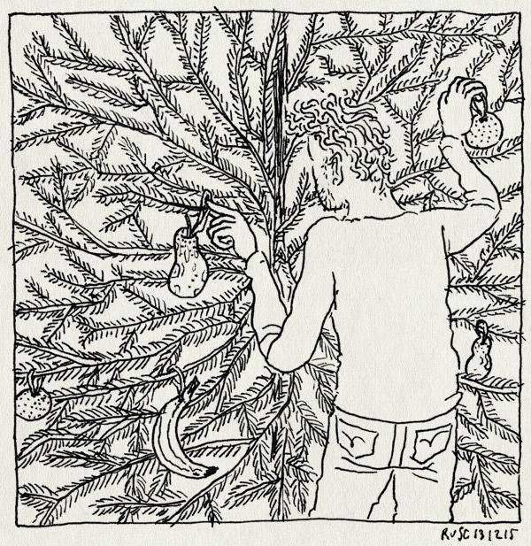 tekening 3124, appel, bert en ernie, boom, fruit, ik ben een kerstbal, kerstboom, mandarijn, mandarijntje, ophangen, peer