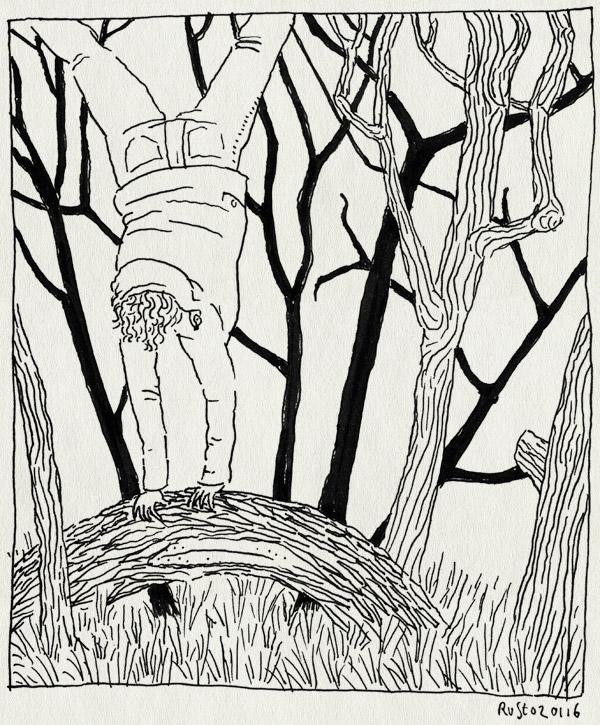 tekening 3144, bomen, bos, castricum, handstand, mama, ondersteboven
