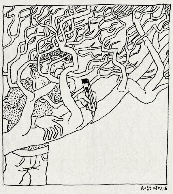 tekening 3181, afsnijden, boom, geboortekaartje, kaartje, mesje, tak, wolf