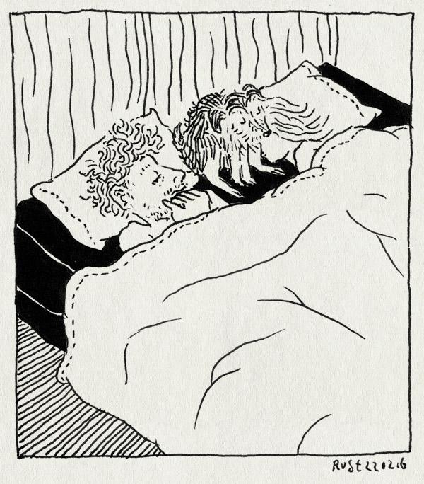 tekening 3195, bed, hond, iniesta, magali, matras, mirjam, nena, slaapbank