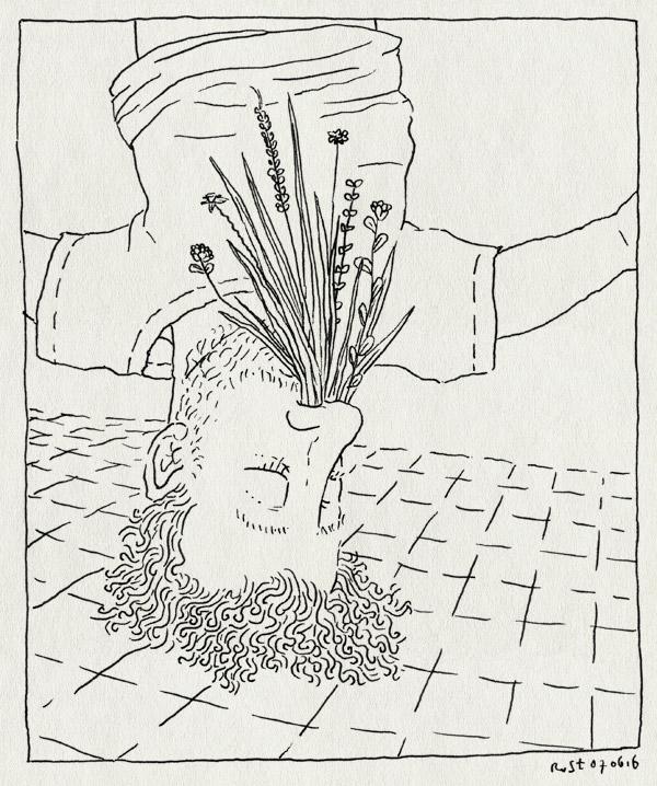 tekening 3301, gras, hooikoorts, neus, neusvaas, ondersteboven, vaas