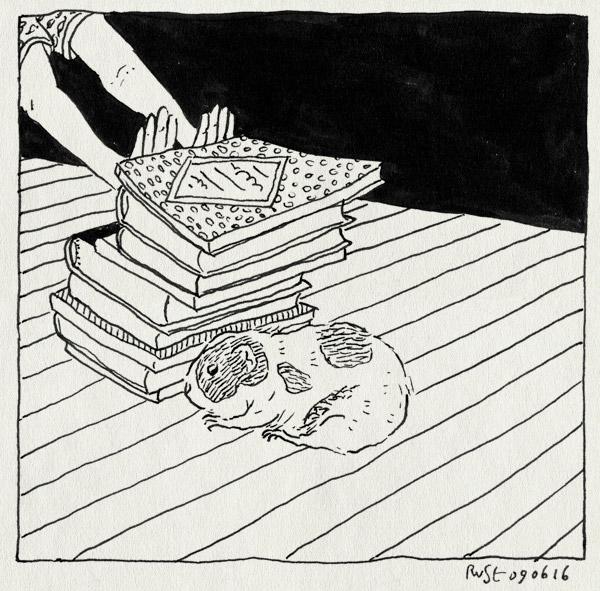 tekening 3303, animatie, boek, boeken, bubbel, burorust, cavia, paulien cornelisse, verwarde cavia, werk