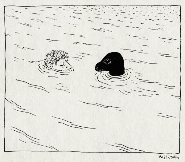 tekening 3319, noordzee, ontmoeting, rob, vlieland, water, zeehond, zeeleeuw