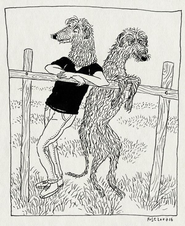 tekening 3344, deerhound, hek, hond, masker, reuzenhond, schillen, sir, zaan