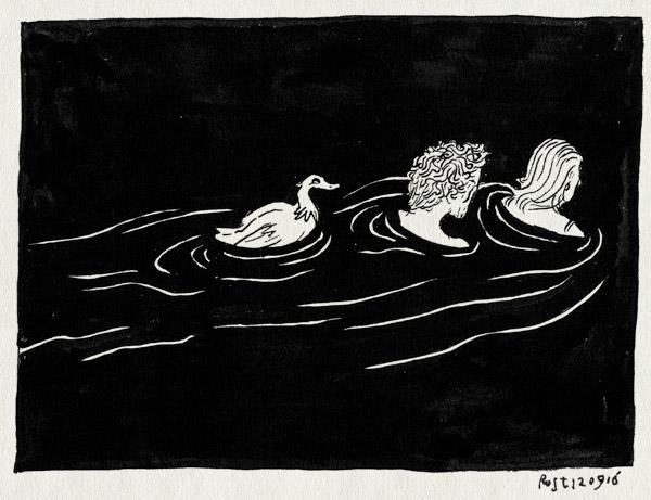 tekening 3398, amsterdam, eend, mirjam, noord, noordhollands kanaal, water, zwemmen